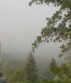 south_fog